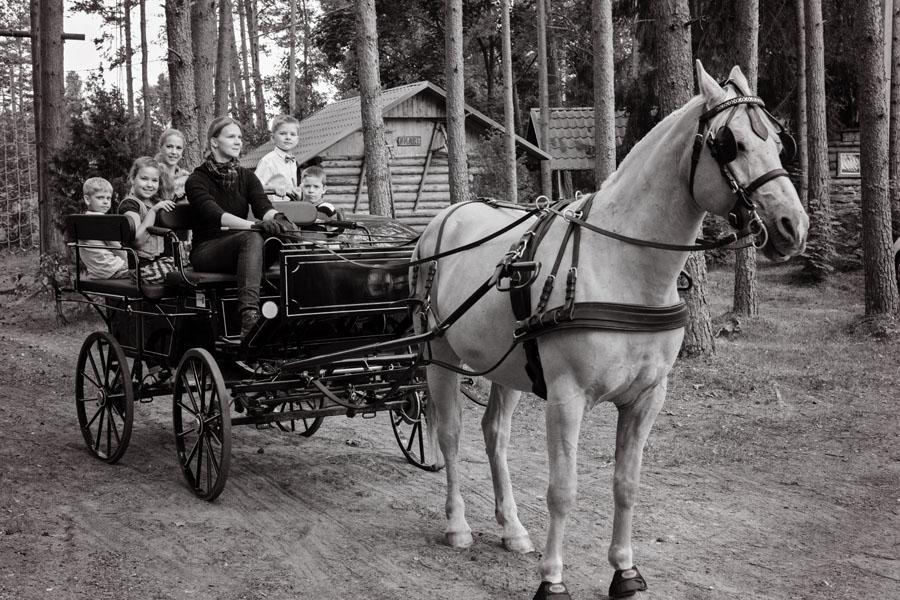 kalessisõit Прогулка в коляске