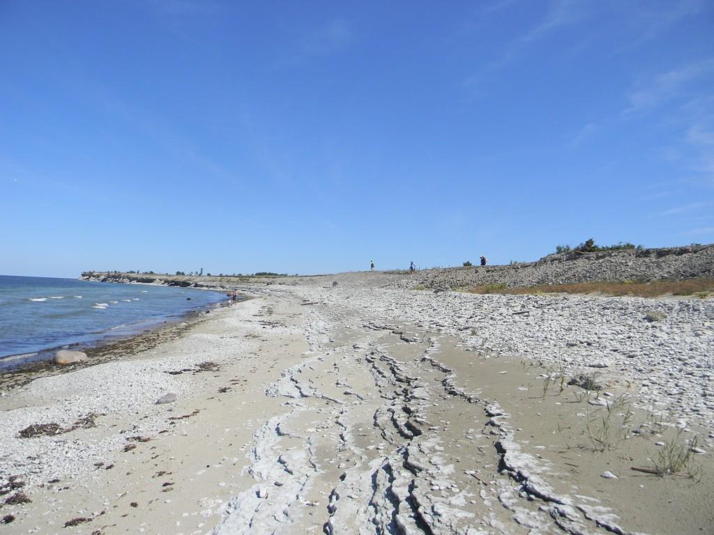 Pakri saared - ekskursioon ja matk - paadiga ülevedu Kurkse sadamast - Aktiivne puhkus Kallaste Turismitalu lähedal Harjumaal