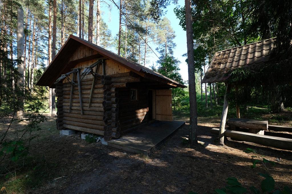 tareke Mari - Metsatareke Kallaste Turismitalu Padisel - Harjumaal - puhkus perega
