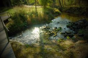 Фотоохота Kloostri jõgi - sillerdav sügis - Kallaste Turismitalu pakub erilisi elamusi- tule ja saa osa - Ärksa hingega talu - www.kallasteturismitalu.ee-opt