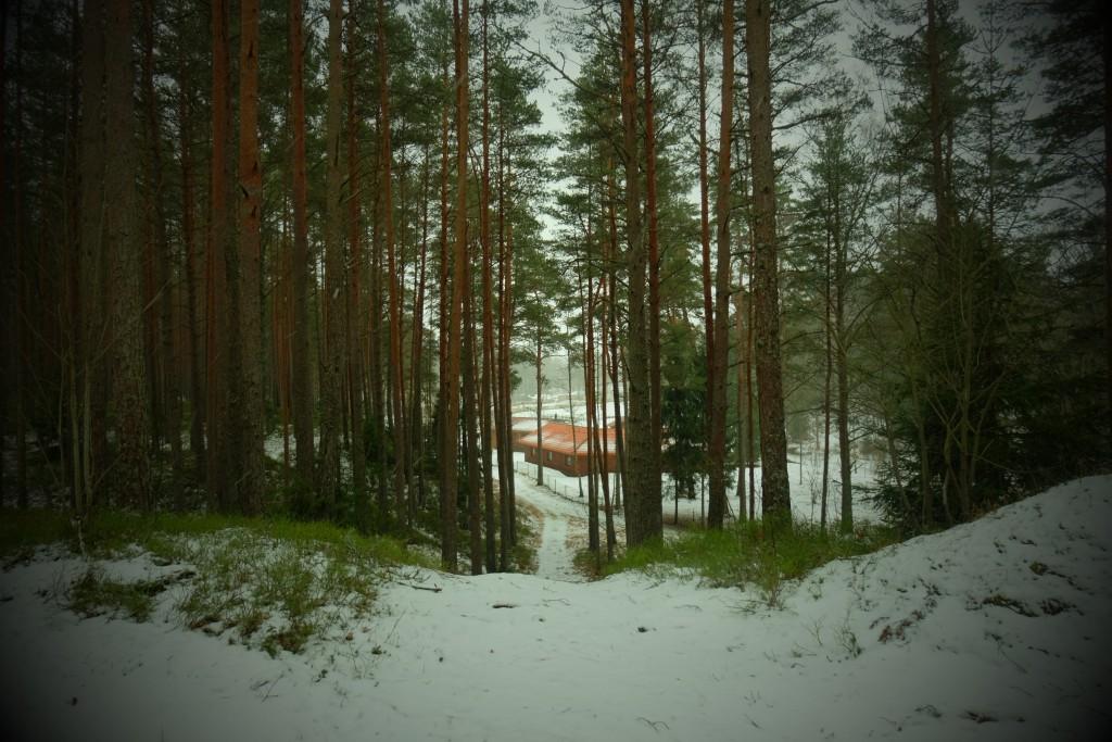 Maja Johannes särab talves - Kallaste talu - ärksa hingega talu Harjumaal. www.kallastetalu.ee Kallaste Talu- Turismitalu & Holiday resort in pa(ra)dise