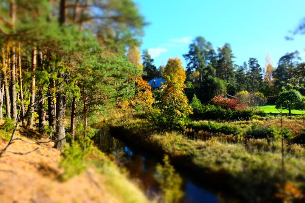 Vaade ja värvid - imeline sügis - Eestimaa imeline loodus - Kallaste Turismitalu pakub erilisi elamusi- tule ja saa osa - Ärksa hingega talu - www.kallasteturismitalu.ee