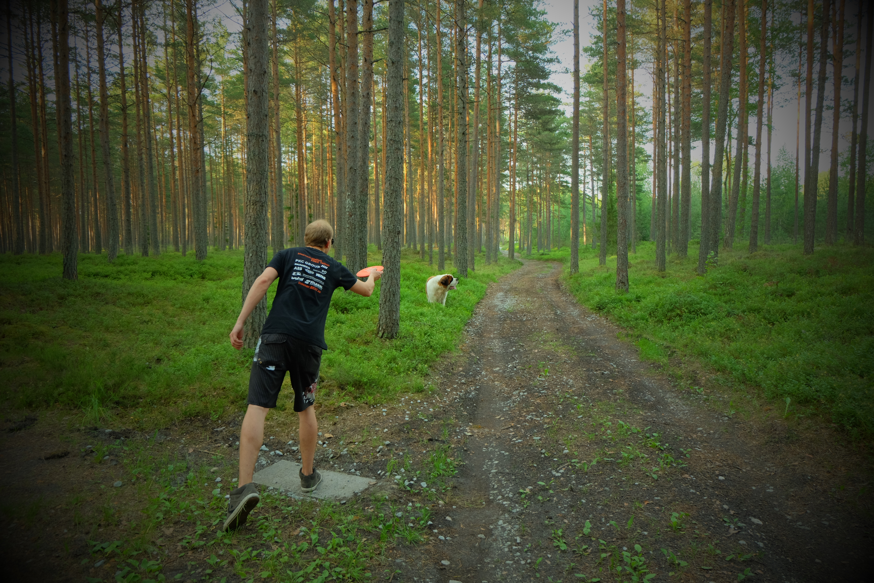 discgolf in Padise. Adventure farm Disc golf has 18 baskets. visiting territory 5€ / per person