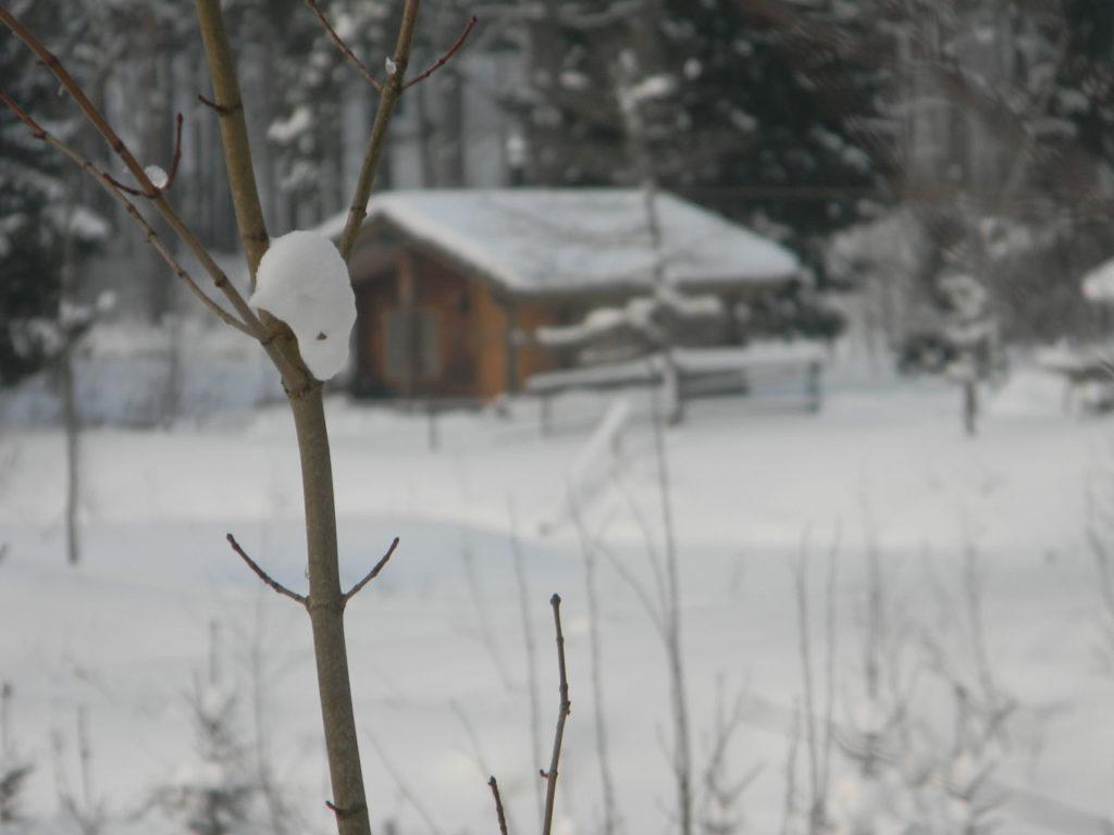Kallaste Turismitalu talvised tegevused - talv - puhkus - loodus - www.kallastetalu.ee