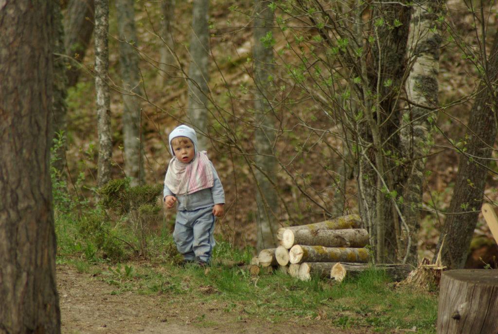 Puhkus perega Kallaste Turismitalus Padisel Harjumaal. Lastega maale ja metsa. Taluloomad, taluasjade muuseum, toredad suvekontserdid ja mänguväljakud ootavad
