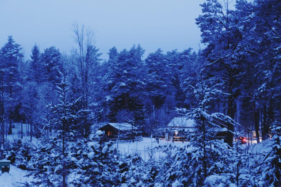 Detsember - jõulud - talveaeg - Kallaste turismitalu - kallastetalu.ee