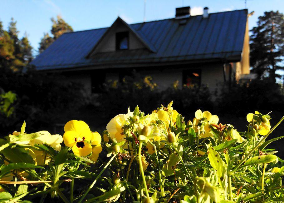 Kallaste Talu- Turismitalu & Holiday Resort. Kloostri Aruküla Vallakool - ajalugu - elamustalu