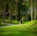 padise-disc-golf-pnev-maastik-ja-kogemus