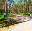 disc-golf-loodus-mets-disc-golf-harjumaal-18-korvi-vaheldusrikas-rada-lapsed-aktiivne-puhkus