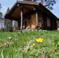 hilja-romantiline-tareke-ja-lilleke-turismitalus-padisel-harjumaal-turism-puhkemaja-loomapark-seikluspark-wwwkallastetaluee