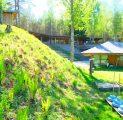 kalju-lava-thi-seminar-loodus-pike-suvelava-vabahulava-noored-snajalad-kevad