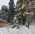 kallaste-turismitalu-talv-suusarajad-wwwkallastetaluee
