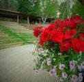 lilled-kalju-lava-kevad-suvi-ilus-loodus-kallaste-turismitalu-harjumaal