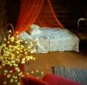 romantiline-tareke-halmi-romantic-cottage-helmi-kallaste-talu-rksa-hingega-talu-harjumaal-wwwkallastetaluee-kallaste-talu-turismitalu-