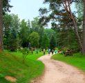 seikluspargi-tegevused-aktiivne-puhkus-suvi-meeskonna-td-pnevaimad-tegevused-ja-imeline-loodus-meeldejvad-sndmused-kallaste-tur