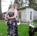 talu-loomad-loomapark-kitsed-loomade-toitmine-kallaste-turismitalu-harjumaal-inimene