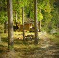 tareke-helmi-vrvidemng-imeline-sgis-eestimaa-imeline-loodus-kallaste-turismitalu-pakub-erilisi-elamusi-tule-ja-saa-osa-rksa-hingeg