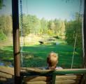 vaatega-kiiktool-eestimaa-imeline-loodus-kallaste-turismitalu-pakub-erilisi-elamusi-tule-ja-saa-osa-rksa-hingega-talu-wwwkallasteturis