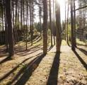 hommik-seiklusrada-mets-sport-kallaste-turismitalus-kallaste-talu-rksa-hingega-talu-harjumaal-wwwkallastetaluee-kallaste-talu-turismita