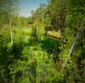 peod-ja-seminarid-kaunis-eesti-looduses-esrtonian-nature-visit-estonia-kallaste-talu-rksa-hingega-talu-harjumaal-wwwkallastetaluee-ka