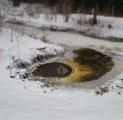 talv-purskaev-vi-ilmaime-kallaste-turismitalus-kallaste-talu-rksa-hingega-talu-harjumaal-wwwkallastetaluee-kallaste-talu-turismitalu-