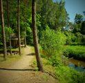 tareke-helmi-ja-peamaja-holiday-resort-in-padise-harjumaa-only-45-km-from-tallinn-wwwkallastetaluee-kallaste-turismitalu-o-metsapuhkus-ka