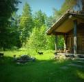 tareke-hilja-holiday-resort-in-padise-harjumaa-only-45-km-from-tallinn-wwwkallastetaluee-kallaste-turismitalu-o-metsapuhkus-kauni-looduse