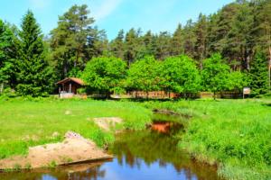 Alumine kompleks - Kloostri jõgi - suvi - rohelus - imeline loodus