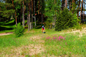 Disc - Golf- disc golf - discgolf - Padisel Kallaste Turismitalus - 18 korviga - Kallaste Turismitalus 2
