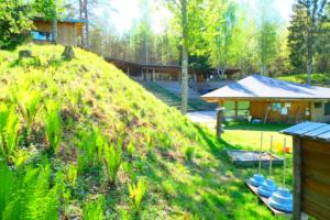 Kalju-lava - tühi - seminar - loodus - päike - suvelava - vabaõhulava - noored sõnajalad - kevad