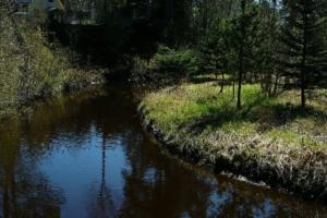 Kallaste Turismitalu kallastetalu.ee loodus puhkus Kloostri jõgi illustreeriv
