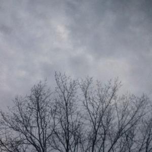 Kallaste Turismitalu kallastetalu.ee loodus puhkus hall taevas illustreeriv