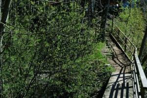 Kallaste Turismitalu kallastetalu.ee loodus puhkus sild illustreeriv