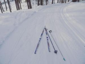Kallaste Turismitalu kallastetalu.ee loodus puhkus suusarada suusatamine talv lumi illustreeriv (2)