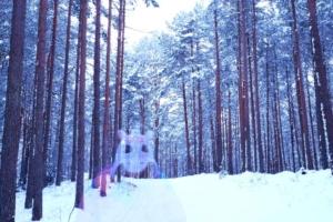 Kallaste Turismitalu www.kallastetalu.ee talv ükssarvik mets suusarada aktiivne puhkus