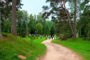Seikluspargi tegevused - aktiivne puhkus - suvi - meeskonna tööd - põnevaimad tegevused ja imeline loodus - meeldejäävad sündmused - Kallaste Turismitalus Harjumaal