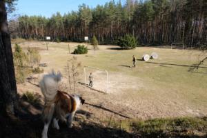 sport aktiivne puhkus Kallaste Turimitalu www.kallastetalu.ee